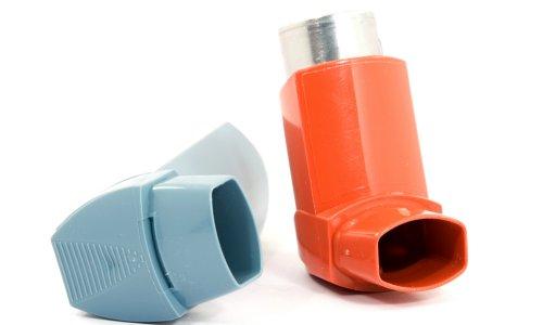 Необходимость профилактики бронхиальной астмы