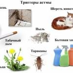 Основные причины бронхиальной астмы