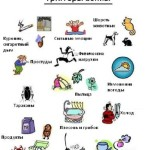 Основные раздражители астмы