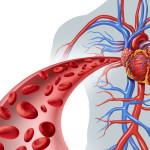 Нарушение кровообращение - причина пневмофиброза