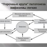Порочные круги патогенеза эмфиземы легких