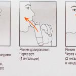Инструкция по использованию Биопарокса