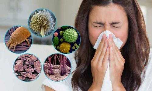 Проблема пылевого бронхита
