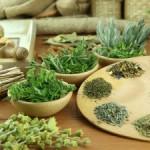 Отвар трав для лечения плеврита легких