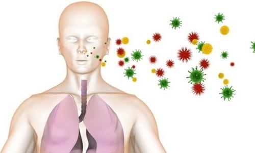 Воздушно-капельный путь передачи пневмоцистоза