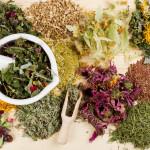 Растительные компоненты в основе рефлекторных препаратов
