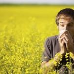Аллергия - причина обострения астмы