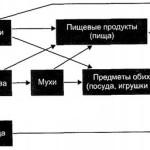 Фекально-оральный путь передачи туберкулеза