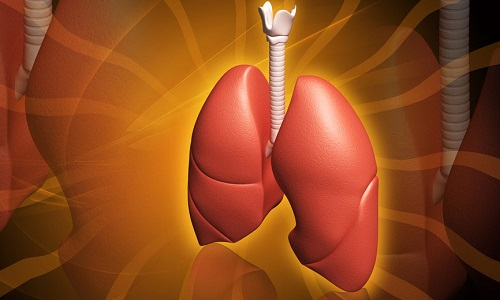 Проблема фиброзно кавернозного туберкулеза